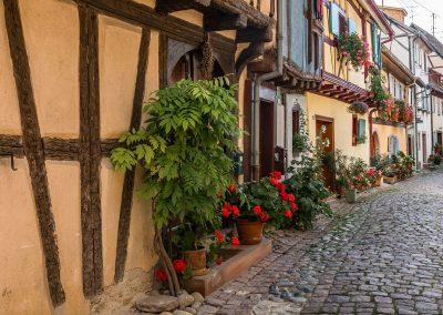 Eguisheim (Alsace) aout 2017 (7)