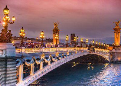 Pont Alexandre 3 - Paris 4 janvier 2014