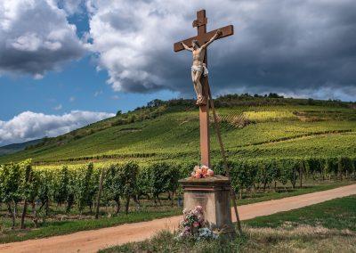Route des vins - ammerschwir_